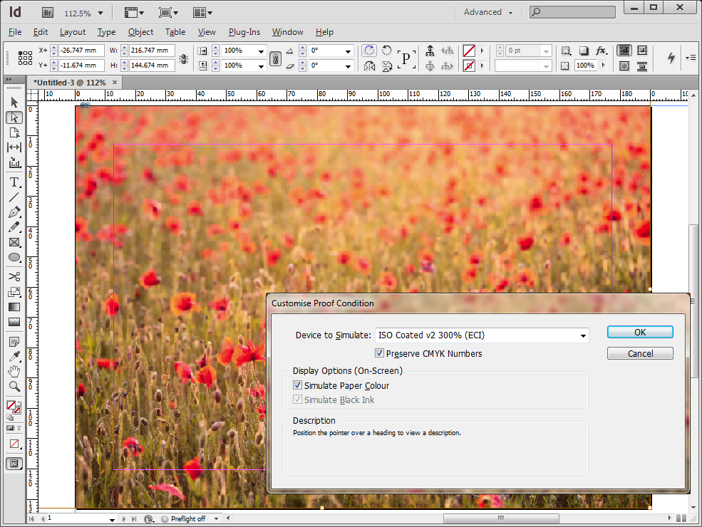 Indesign-screen-1
