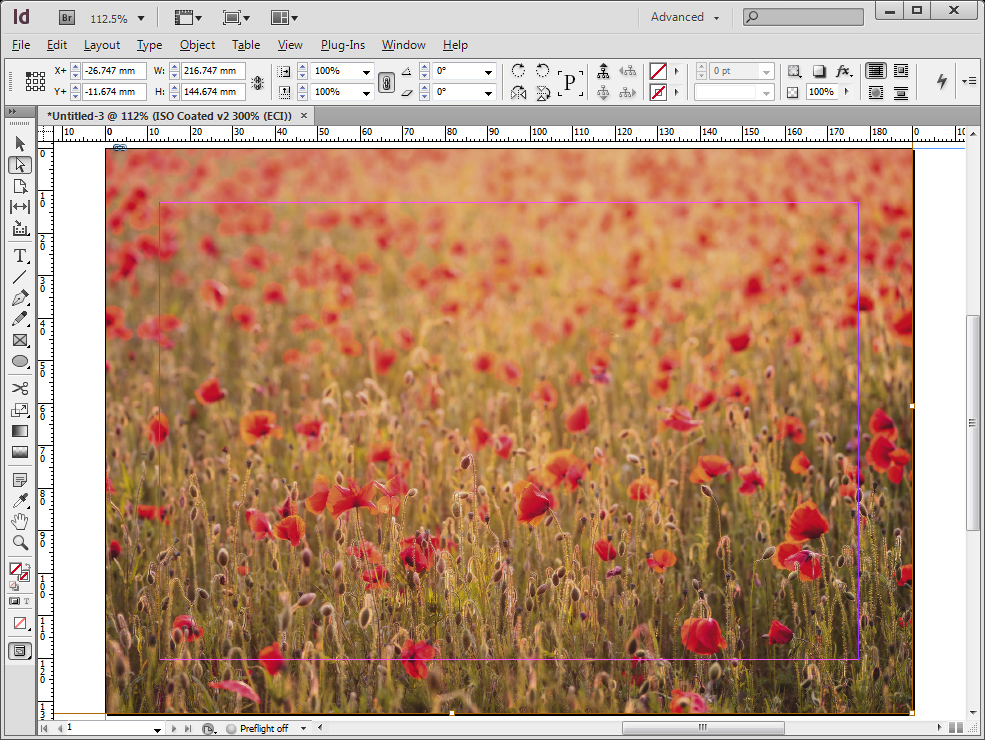 Indesign-screen-2